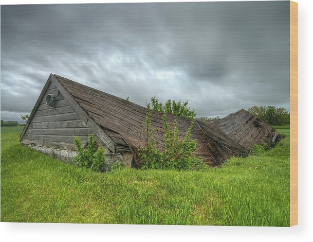 Landscape Wood Print featuring the photograph Abandoned In The Storm by Nebojsa Novakovic