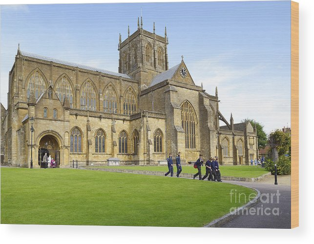 Abbey Wood Print featuring the photograph Abbey Life by Doug Wilton