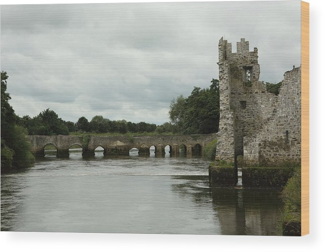 Castle Wood Print featuring the pyrography Adare Castle by Barry Shepherd