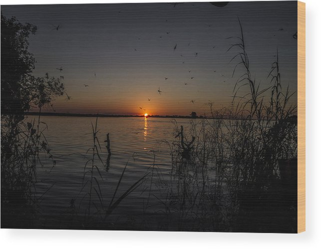 African Wood Print featuring the photograph African Sunset by Suanne Forster