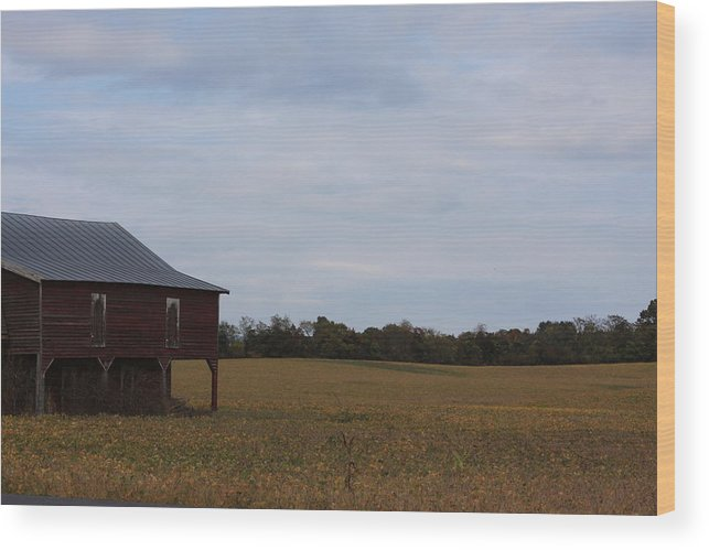 Farm Wood Print featuring the photograph After The Harvest by Andrew Romer