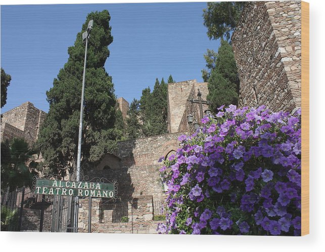 Alcazaba Malaga Wood Print featuring the photograph Alcazaba Malaga by Jan Katuin