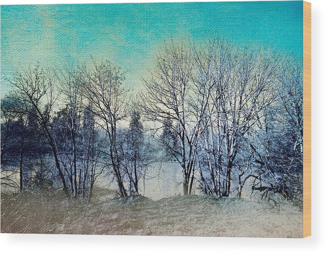 Nature Photography Wood Print featuring the photograph Along The Willamette by Bonnie Bruno