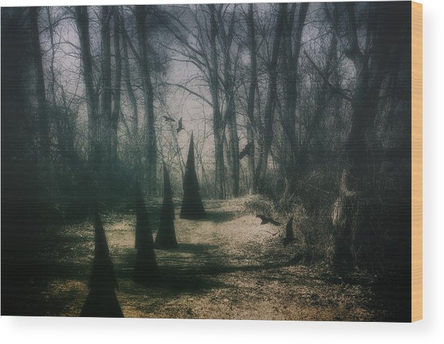 Coven Wood Print featuring the photograph American Horror Story - Coven by Tom Mc Nemar