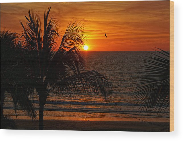 Sunset Wood Print featuring the photograph Another Beautiful Sunset by Lanis Rossi