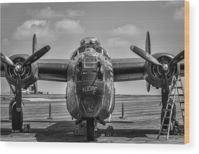 Liberator Wood Print featuring the photograph Audre by Nathan Gingles