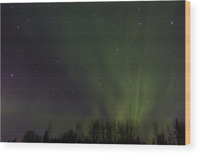 Alberta Wood Print featuring the photograph Aurora Borealis 9491 by Karen Celella