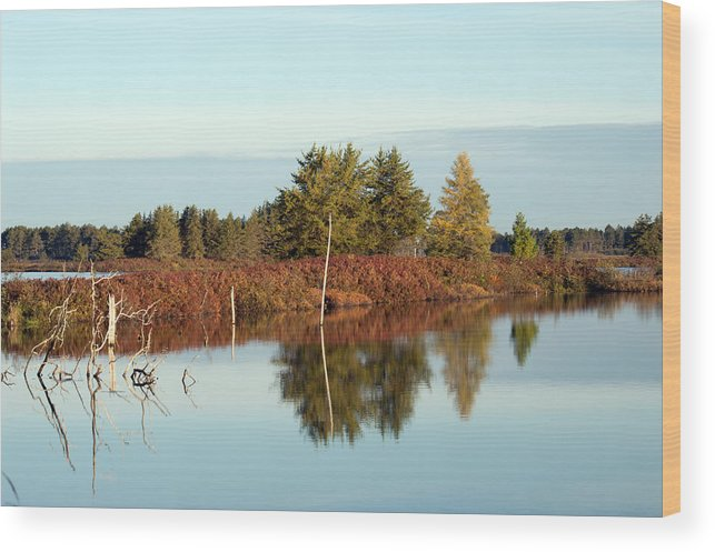 Wetland Wood Print featuring the photograph Autumn by Linda Kerkau