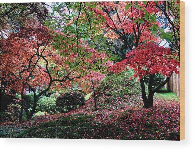 Autumn Wood Print featuring the photograph Autumn by Nataliya Pergaeva