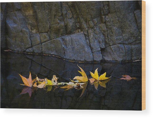 Autumn Wood Print featuring the photograph Autumn Reflections by Saija Lehtonen