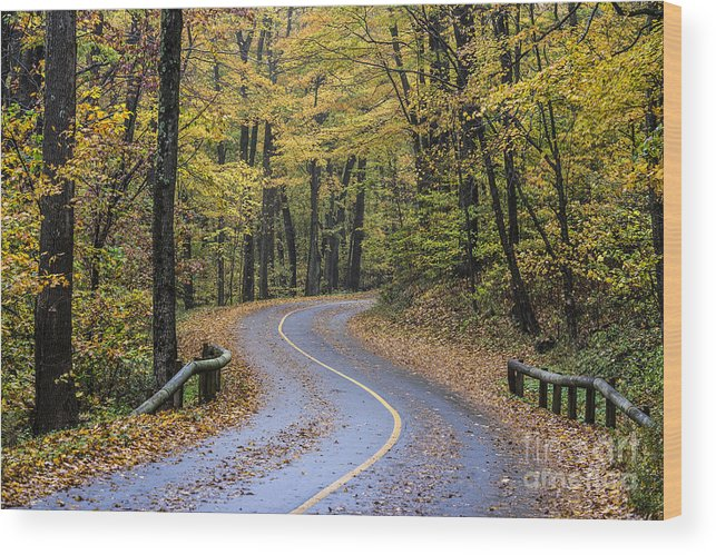 Massachusetts Wood Print featuring the photograph Autumn Road by John Greim