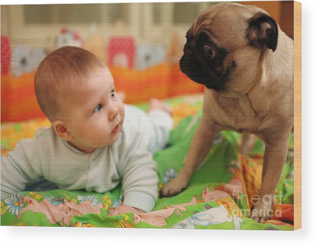 Baby Wood Print featuring the photograph Baby And Dog by Konstantin Sutyagin