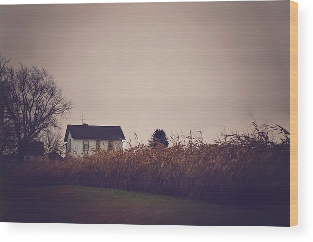 House Wood Print featuring the photograph Back To The Old House Rustic Farmhouse Photo by Elle Moss
