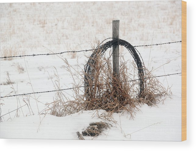 Country Wood Print featuring the photograph Barbed Wire Fence Post by Brian Ewing