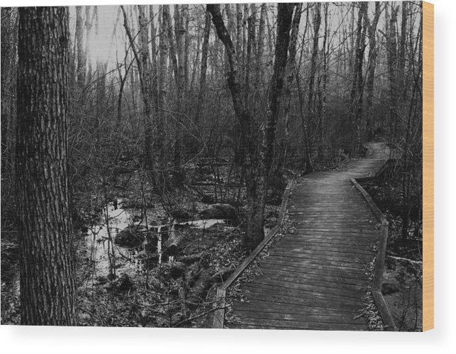 Battle Road Wood Print featuring the photograph Battle Road Boardwalk by Jeff Heimlich