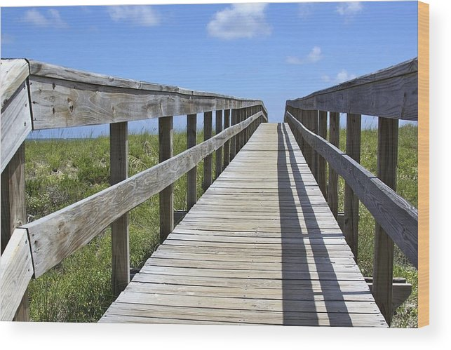 Apalachicola Wood Print featuring the photograph Beach Bound by Soccer Dog Design