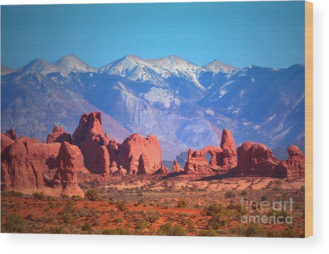 Arches National Park Wood Print featuring the photograph Beneath Blue Skies by Tara Turner