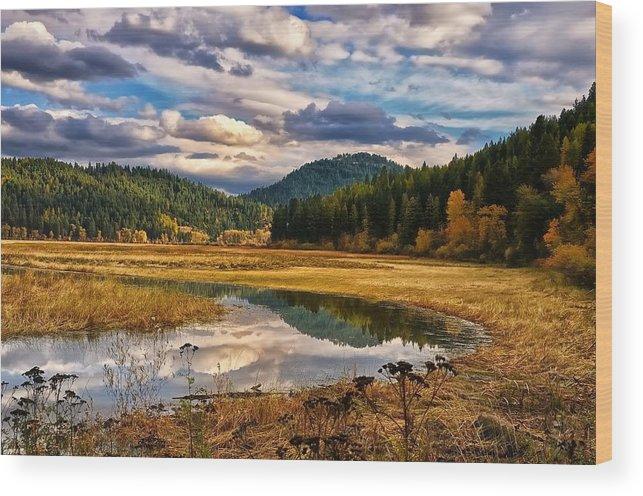 Autumn Wood Print featuring the photograph Benewah Lake Wild Rice Fields by Philip Kuntz