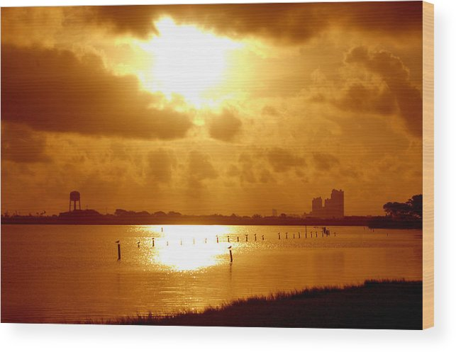 Alabama Wood Print featuring the digital art Birds On The Poles Sunrise by Michael Thomas
