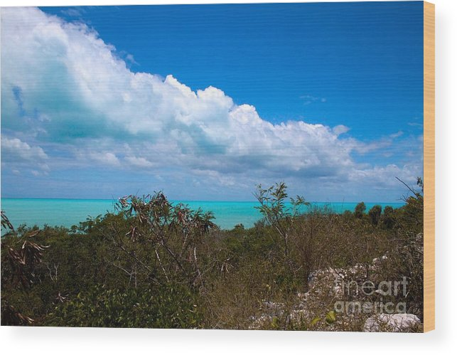 Caribbean Wood Print featuring the photograph Blue 2 Of 5 by Cheryl Hurtak
