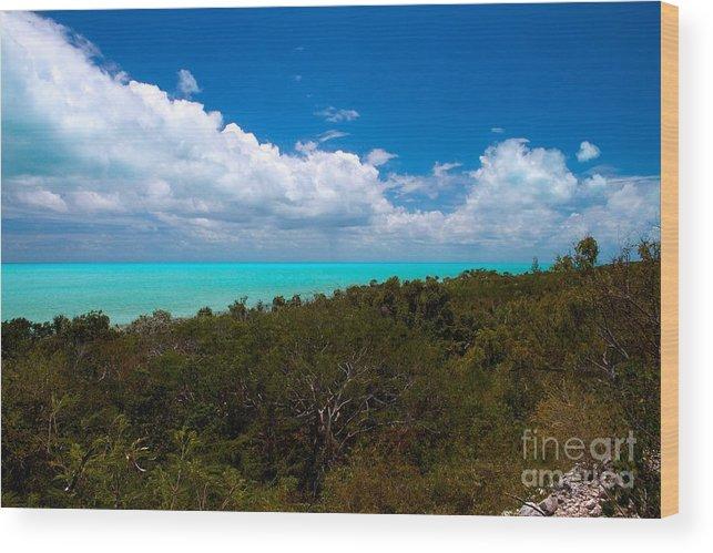 Exuma Wood Print featuring the photograph Blue 3 Of 5 by Cheryl Hurtak
