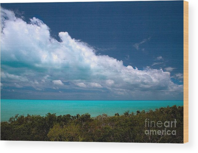 Vacation Wood Print featuring the photograph Blue 5 Of 5 by Cheryl Hurtak