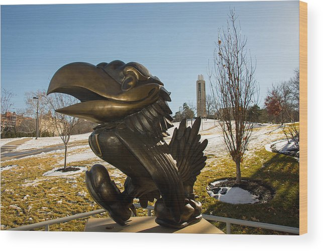 Bronze Jayhawk Wood Print featuring the photograph Bronze Jayhawk by Jean Hutchison