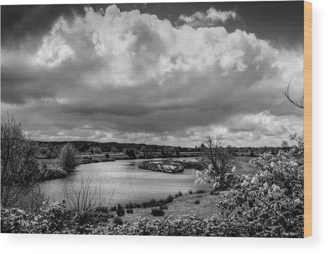Brownsmead Wood Print featuring the photograph Brownsmead Panorama by Paul Haist