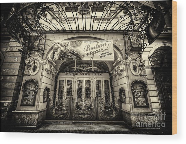 Budapest Wood Print featuring the photograph Budapest Opera by Mohamed Rahmo