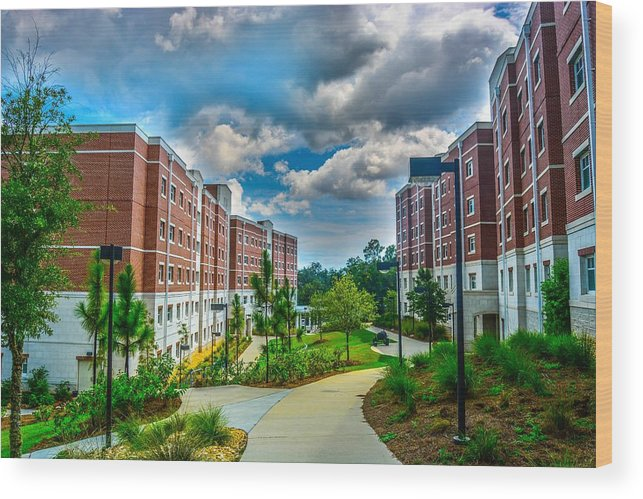 Uwf Wood Print featuring the photograph Campus Life by Jon Cody