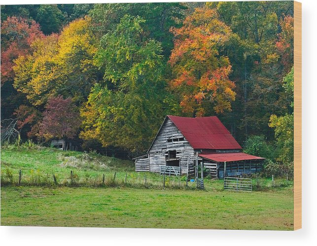 Appalachia Wood Print featuring the photograph Candy Mountain by Debra and Dave Vanderlaan