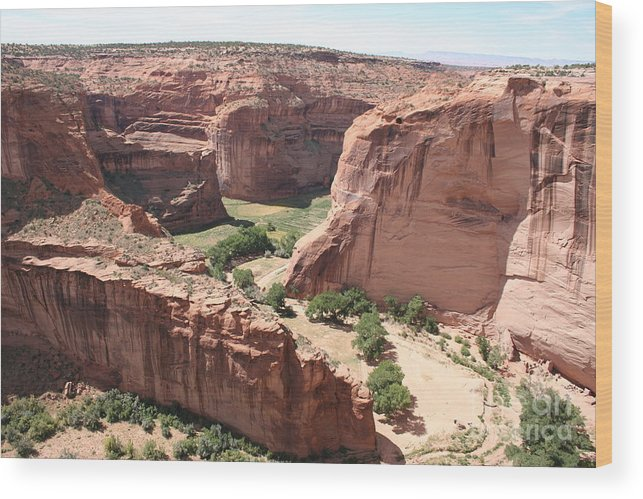 Canyon Wood Print featuring the photograph Canyon De Chelly Arizona by Christiane Schulze Art And Photography