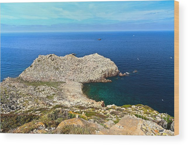 Sandalo; Cape; Carloforte; Cliff; Coast; Europe; Granite; Headland; Holiday; Island; Italian; Italy; Landscape; Mediterranean; Natural; Nature; Overview; Outdoors; Pietro; Promontory; Rock; Rocky; Sardinia; Sea; Shore; Seaside; Summer; Sunny; Tourism; Water; Wild; Wood Print featuring the photograph Cape Sandalo In Carloforte by Antonio Scarpi