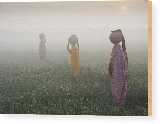 Asia Wood Print featuring the photograph Carrying Water On A Foggy Morn In India by Michele Burgess