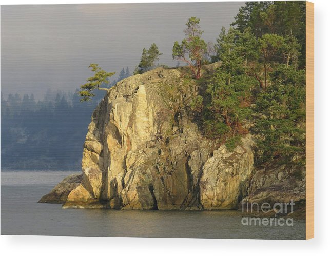 Shore Wood Print featuring the photograph Catching First Light by Frank Townsley