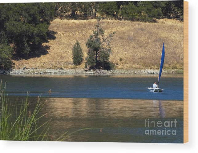 Napa Valley California Water Sailboat Sailboats Boat Boats Grass Greases Landscape Landscapes Waterscape Waterscapes Wood Print featuring the photograph Changing Directions by Bob Phillips