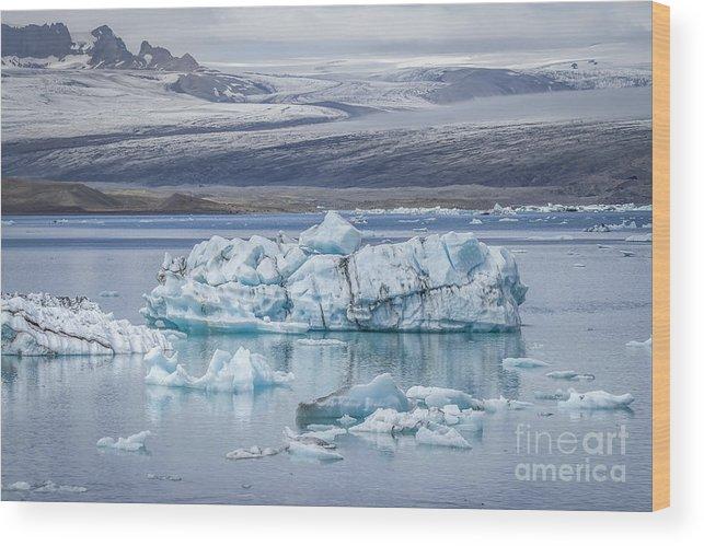 Jokulsarlon Wood Print featuring the photograph Chasing Ice by Evelina Kremsdorf