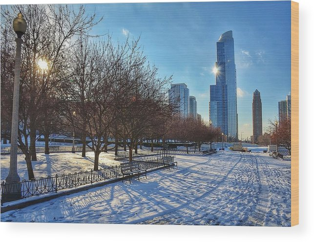 Chicago Wood Print featuring the photograph Chicago Park by Nikki Watson  McInnes