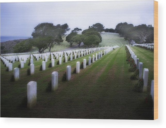 Fort Rosecrans National Cemetery Wood Print featuring the photograph Christmas Fort Rosecrans National Cemetery by Hugh Smith