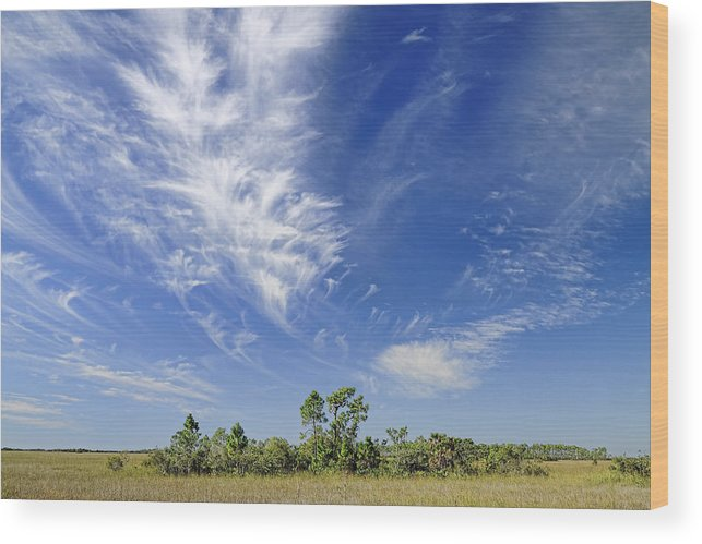 Cloud Wood Print featuring the photograph Cirrus Clouds by Rudy Umans