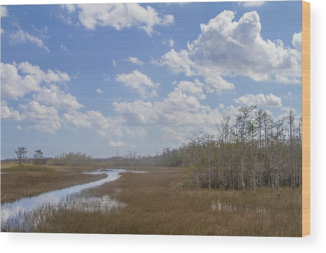 Landscape Wood Print featuring the photograph Cloud 9 by Kruise Link