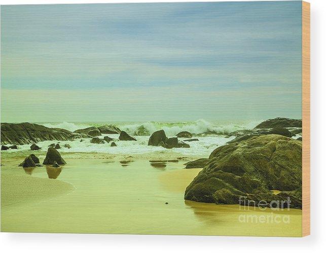Water Wood Print featuring the photograph Coastal Landscape Of Sri Lanka by Regina Koch