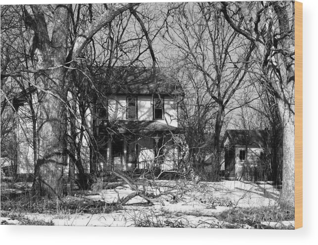 Farmhouse Wood Print featuring the photograph Cold Abandon IIi by Larry Jones