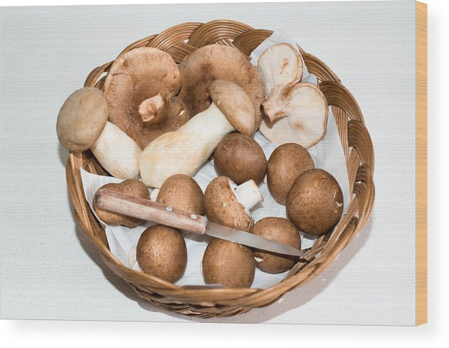 Food Wood Print featuring the photograph Collected Mushrooms by Frank Gaertner