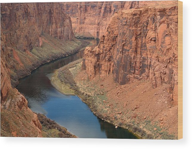 Scenics Wood Print featuring the photograph Colorado River Arizona by R9 ronaldo