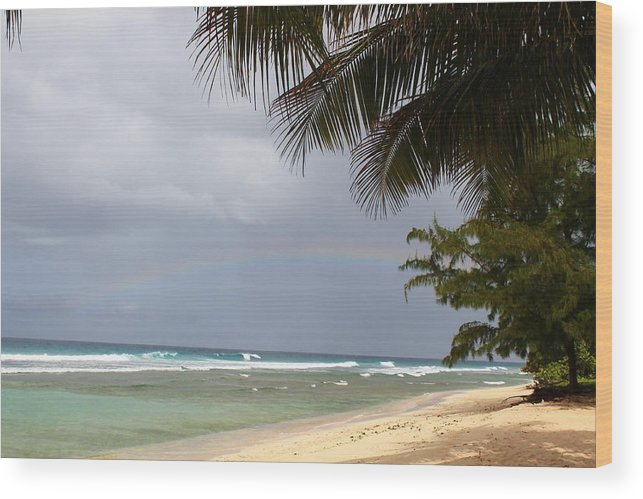 Rainbow Wood Print featuring the photograph Colors After The Rain by Catie Canetti