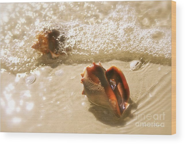 Conchs In Surf Wood Print featuring the photograph Conchs In Surf 2 Antique by Olivia Novak
