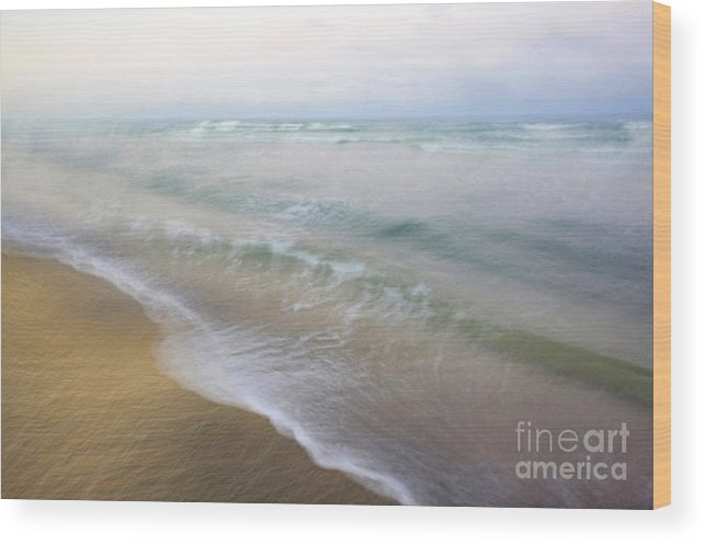 Tropical Wood Print featuring the photograph Dania Beach by Glennis Siverson