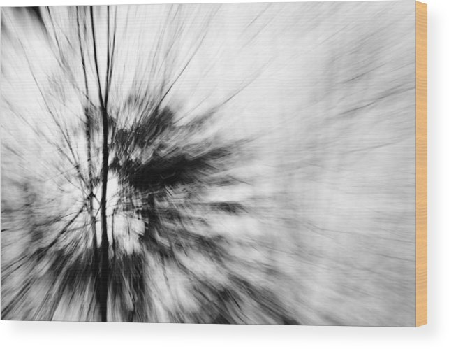 Black & White Photography Wood Print featuring the photograph Dead Ash 2 by Jackie Novak