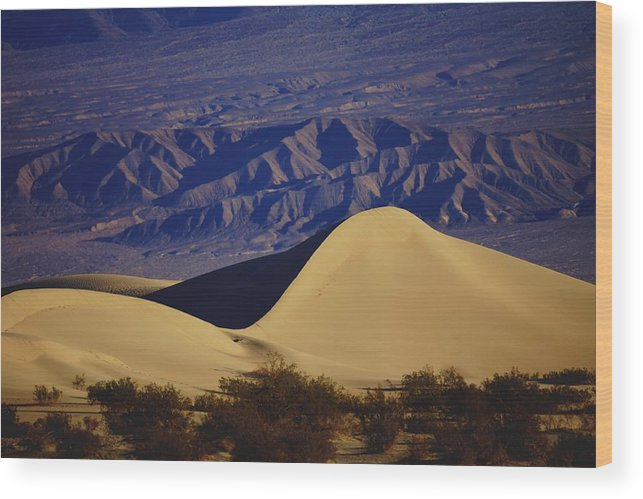 Sand Dunes Wood Print featuring the photograph Desert Wave by Michael Courtney